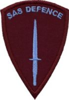 Defence Badge